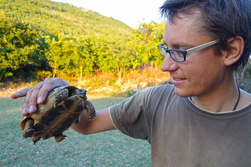 Überlebenskünstler bei der Untersuchung einer Schildkröte