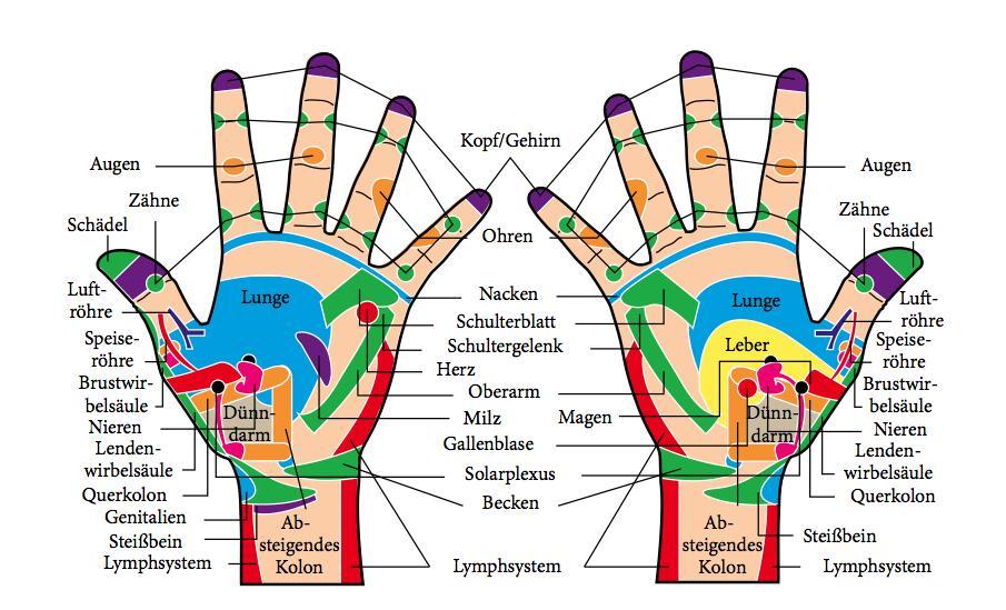 Auch die Hanfläcen spiegeln unseren Körper als Reflexzonen wieder.