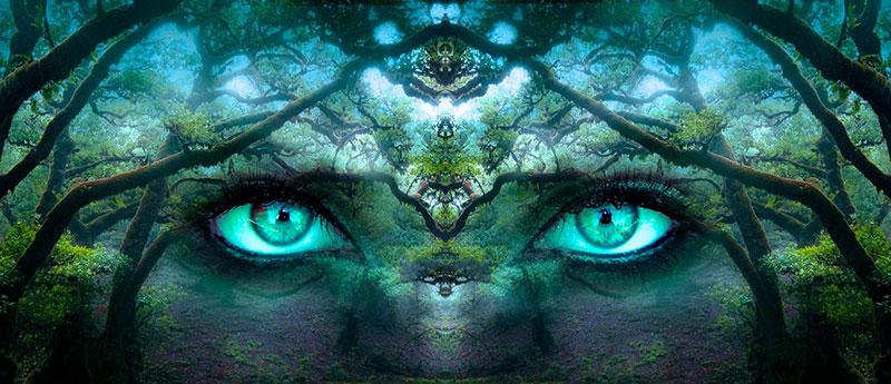 Hellsichtigkeit lieg in unserer innersten Natur
