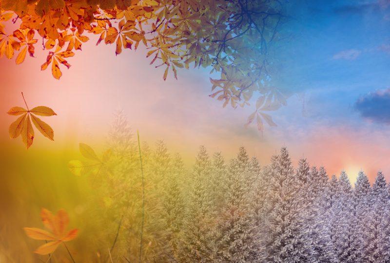 Die Natur im Wandel der Jahreszeiten