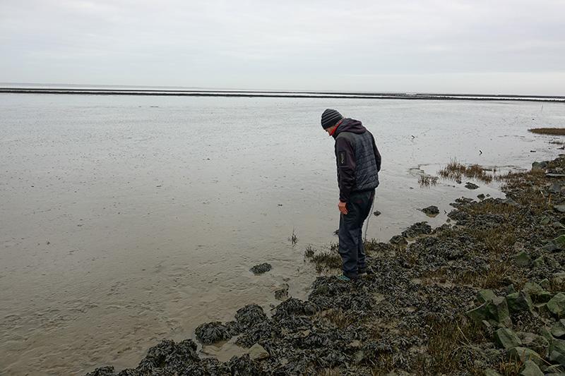 Darf bei keinem Ostfrieslandurlaub fehlen: Eine Wanderung im Wattenmeer.