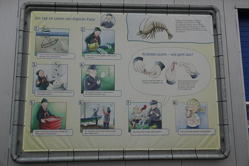 Eine Informationstafel mit einer Anleitung zum Krabben pulen