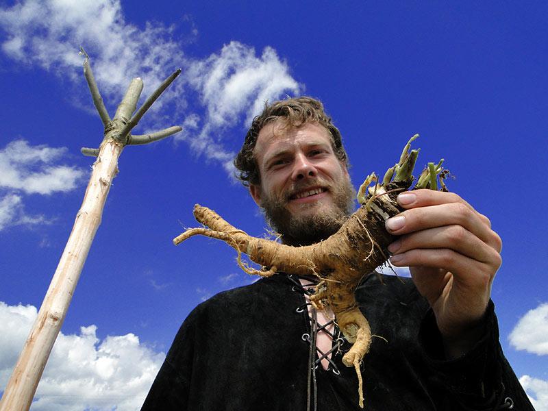Wenn sich ein Wildnisexperte gut auskennt ist das Finden pflanzlicher Notnahrung kein Problem