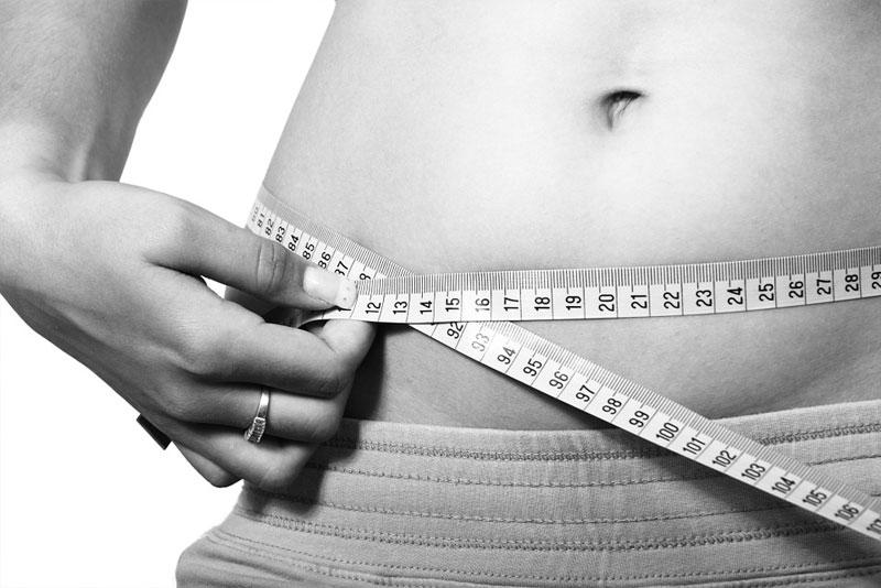 Fett als Lebensretter?