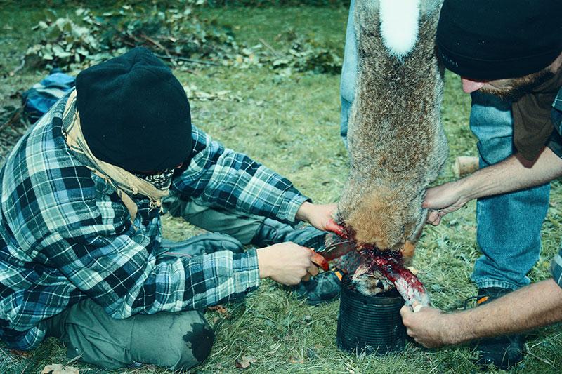Auch die Vollversorgung mit Wildnahrung gehört zu einem solchen Intensivcamp dazu.