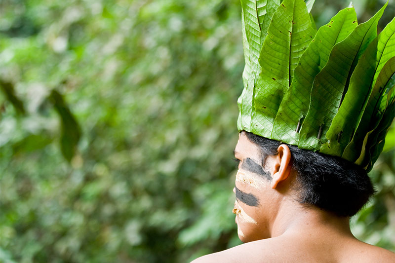 Schamanen nutzen die Heilkraft der Natur seit Jahrtausenden