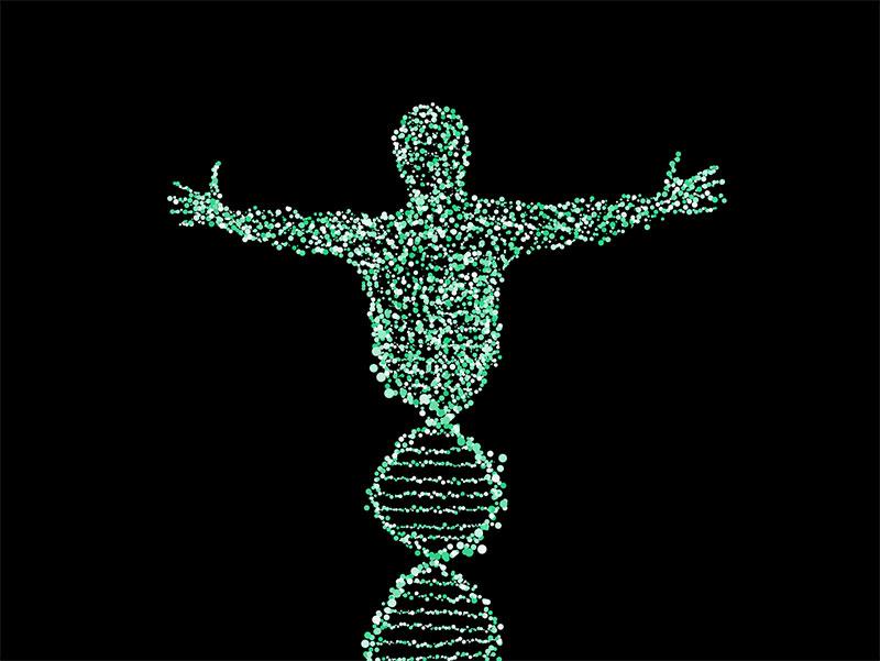 Ist der Mensch wirdklich das Ergebnis eines DNS Codes