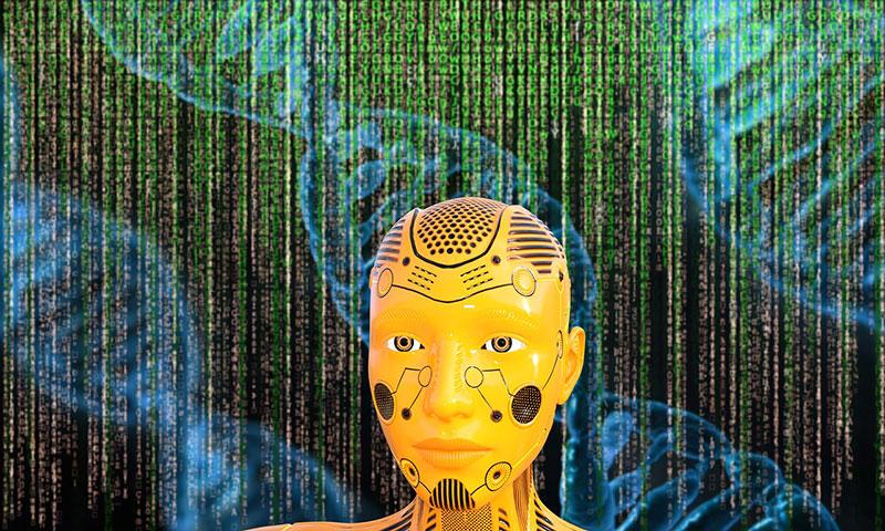 Kann so etwas komplexes wie das menschliche Gehirn wirklich durch Zufall entstehen