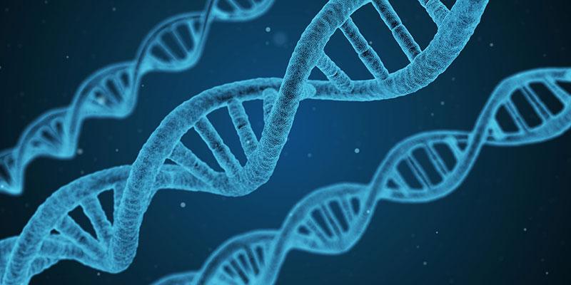 So stellt sich die Moderne Wissenschaft unsere DNA Stränge vor