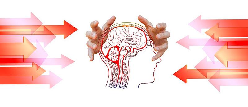 Unser Verstand kann uns ebenso in die Irre leiten wie er uns helfen kann