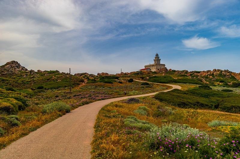 Greenwas auf Korsika